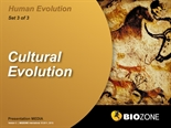 Picture of Cultural Evolution